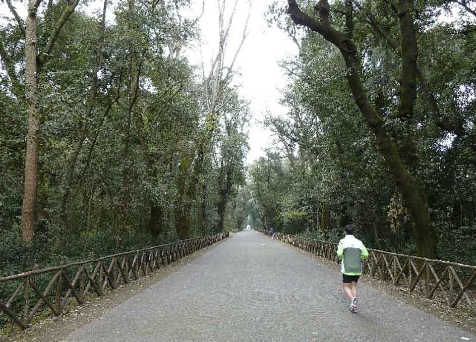 Correre a Napoli: Bosco Capodimonte, Napoli