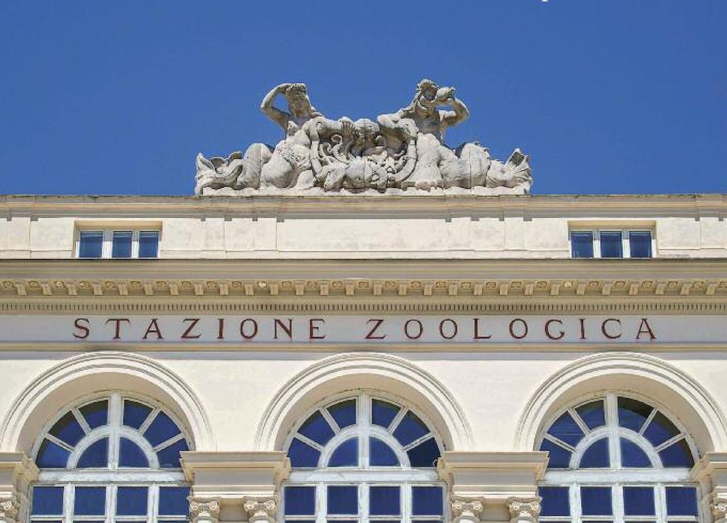 Stazione Zoologica Anton Dohrn di Napoli