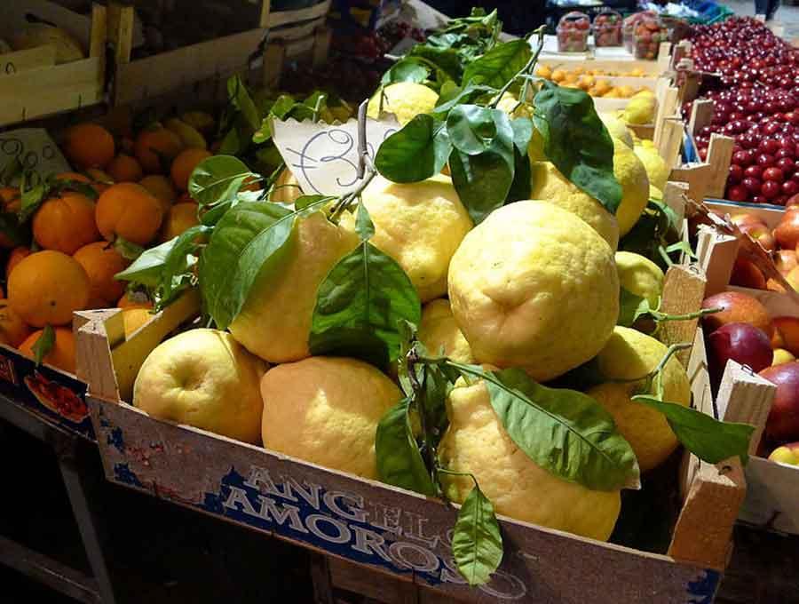 Limone gigante Limoncello
