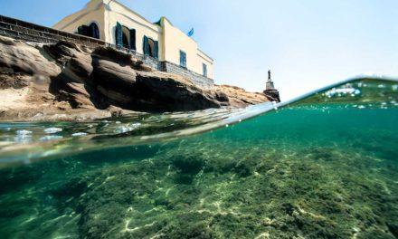 Immersione Virtuale nel Parco Sommerso della Gaiola