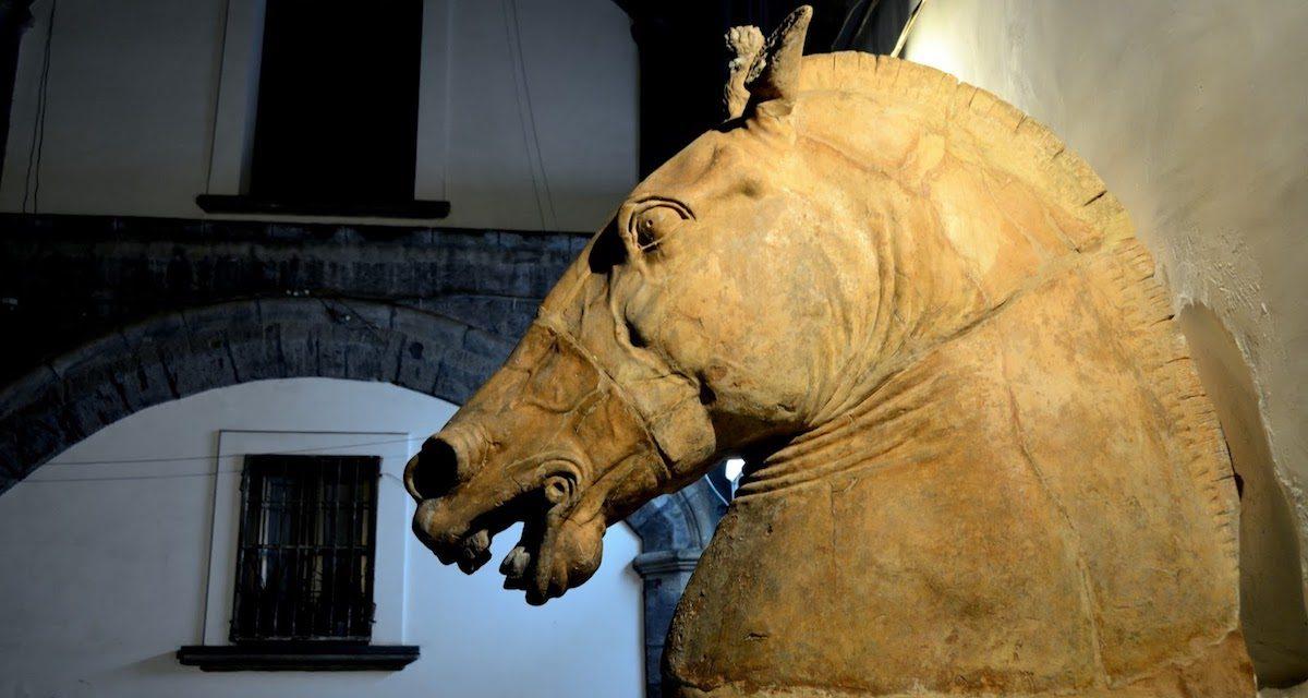 La Testa di Cavallo di Donatello, emblema di Napoli