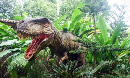 ZOOrassic Park 2 – Arrivano i dinosauri allo Zoo di Napoli