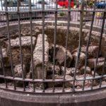 S'arrecorda 'o Cippo a Furcella, storia di un proverbio popolare di Napoli