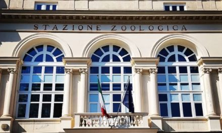 Museo Darwin-Dohrn (DaDoM) nella villa Comunale di Napoli