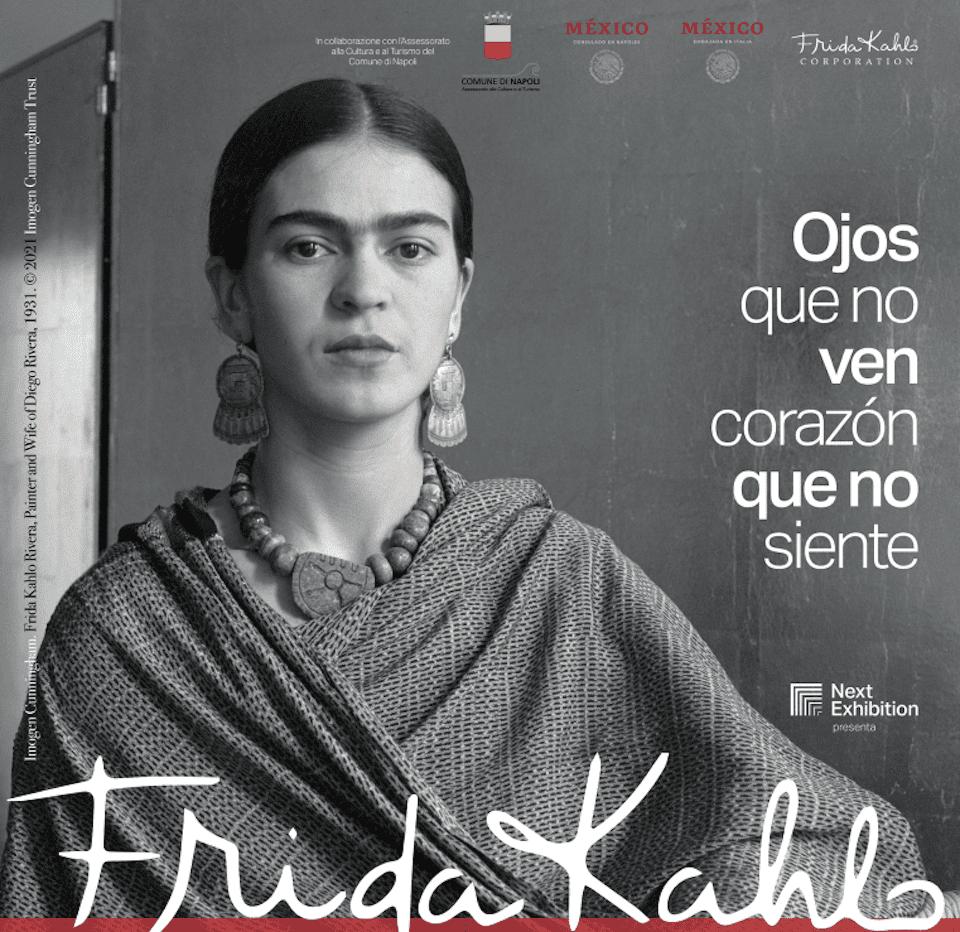 Frida Kalo al PAN